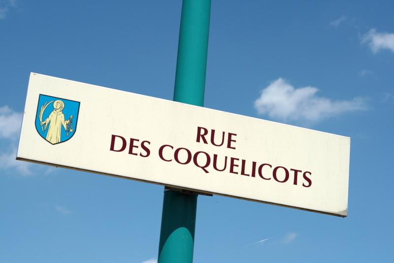 Rue des coquelicots - Lili et le scarabée rOZ